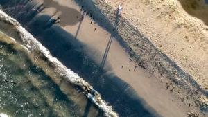 ドローンで空撮した象潟海水浴場浜辺